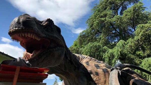 Giganteschi T. Rex, Raptor e Mammut: a Rovereto arriva la mostra Dinosauri in carne e ossa