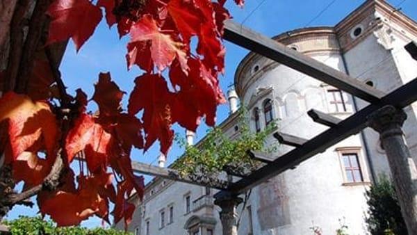 Domenica 3 novembre l'ingresso al museo è gratis