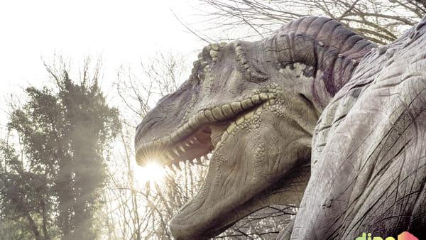 A Rovereto dinosauri in carne e ossa