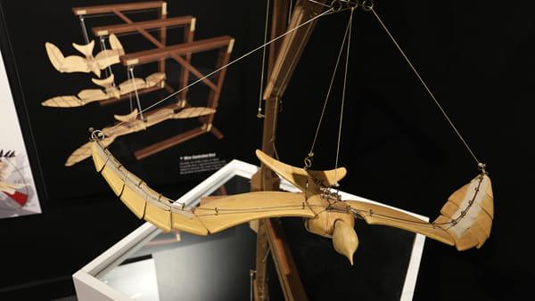Il Mondo di Leonardo, mostra a Palazzo delle Albere